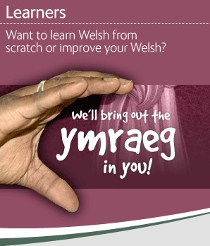 Learn welsh